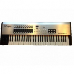 CONTROLADOR MIDI 61 TECLA PESADA PARQUER